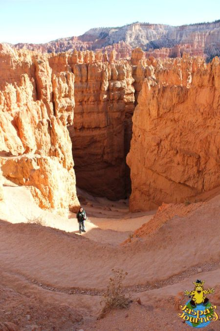 Heading down into the Amphitheatre among the hoodoos, Bryce Canyon National Park