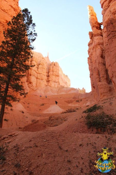 The steep way back out of the Amphitheatre, Bryce Canyon National Park
