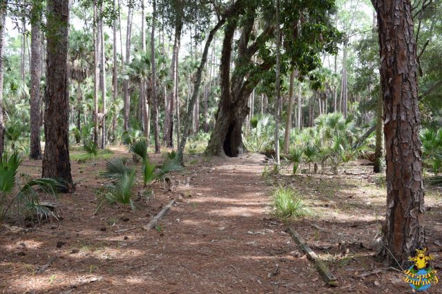 The path beside the slave houses